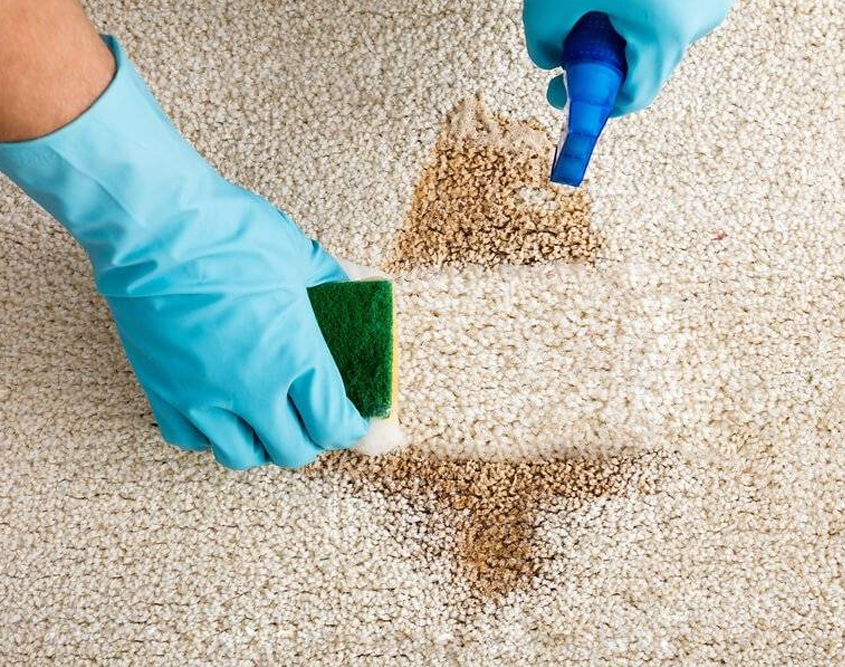 Carpet Cleaning Toorak