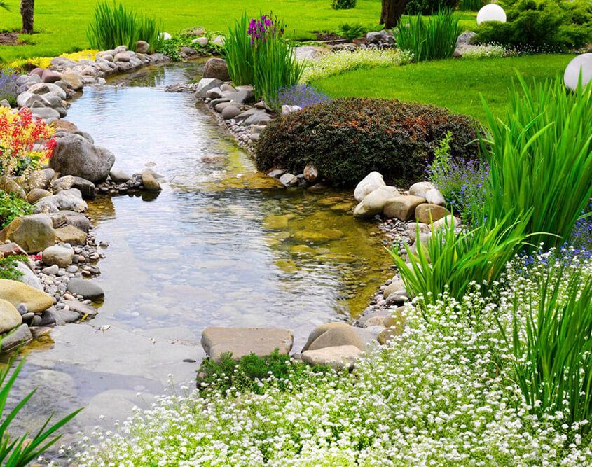 Garden Services Camberwell